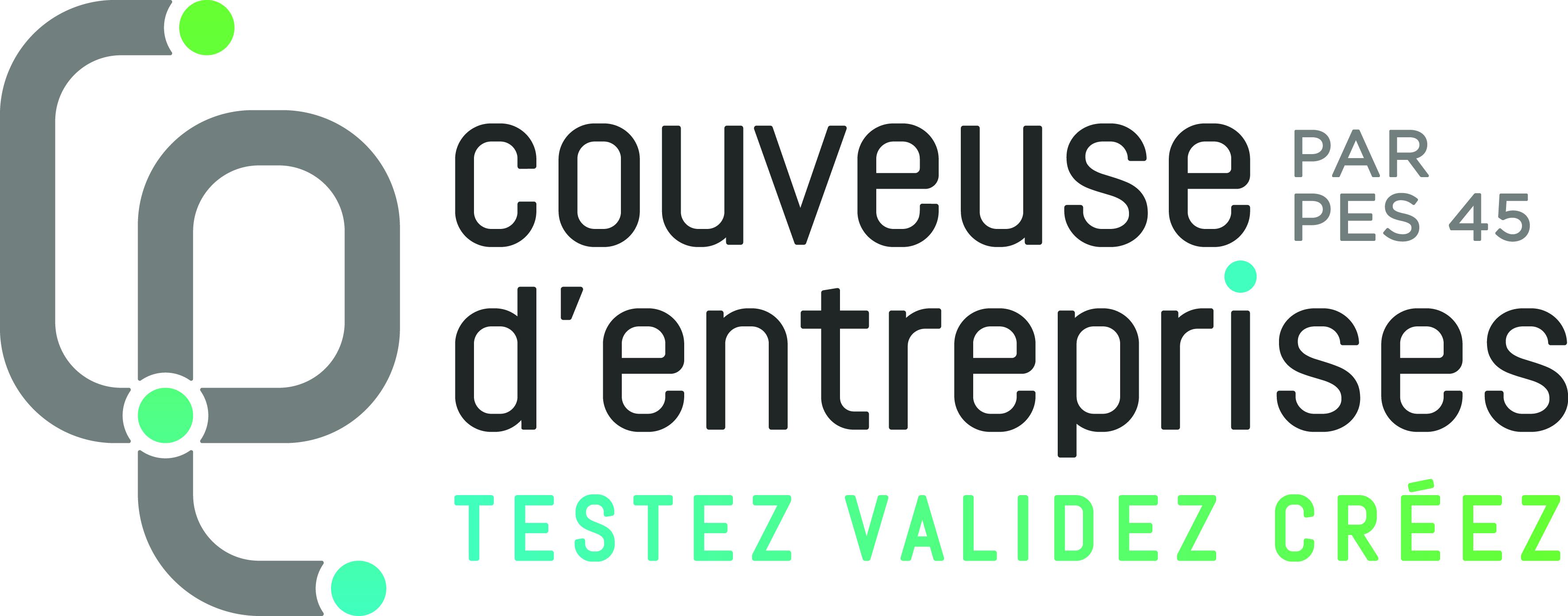 Le logo de la couveuses d'entreprises PES 45 à Orléans